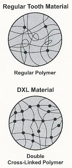 NOBILDENT teeth DXL chart